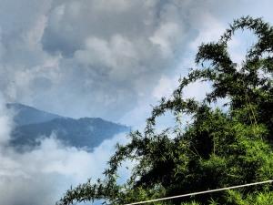 kalimpong-darjeeling 2014 288